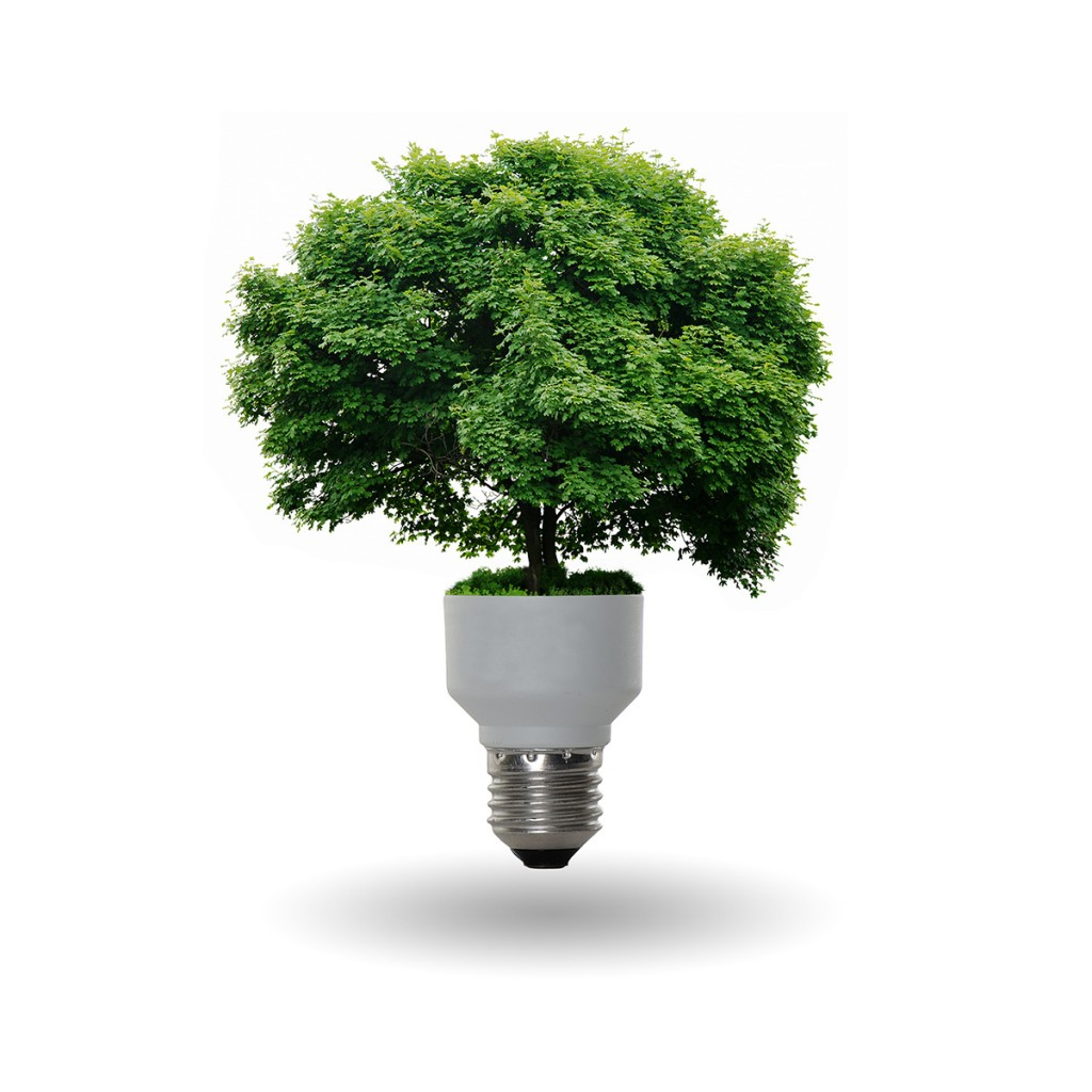Ahorro-de-energía-en-el-hogar-1024x1024